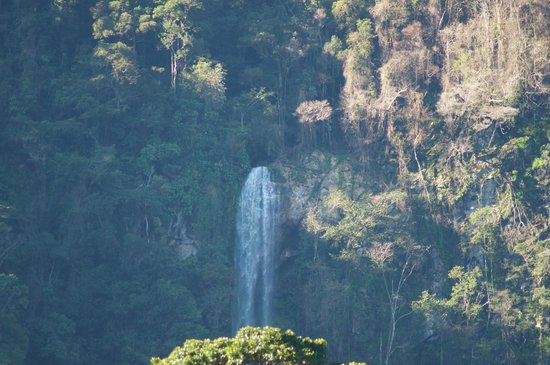 Villas Pico Bonito: The view of the waterfall from our Villa