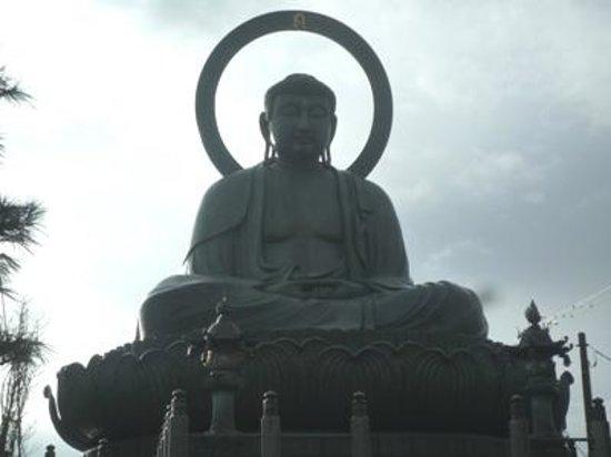 Takaoka Daibutsu Buddha : 高岡大仏03