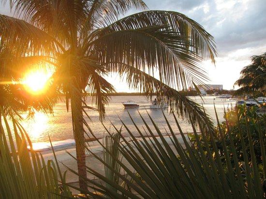 Sunset Marina Resort & Yacht Club: vista desde el balcón de la habitación
