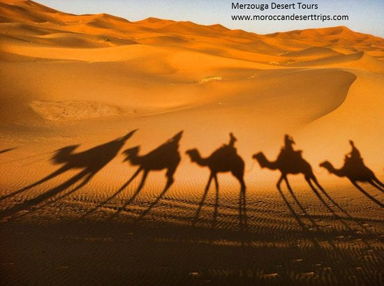 Moroccan Desert Trips: Merzouga Camel Treck