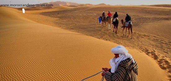 Moroccan Desert Trips: Merzouga desert Guide