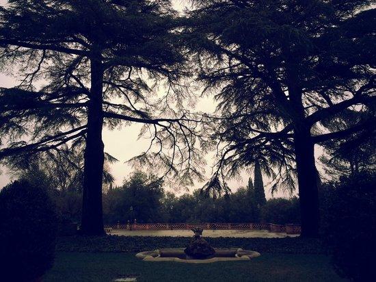 Borgo Dei Conti Resort: Entry