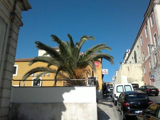 Hotel Sete Colinas : Rue en sortant du SETE COLINAS