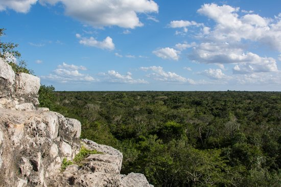 Coba Mayan Traditions: The view from climbing the temple.