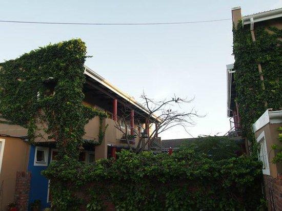 Tu Casa B&B : Außenbereich (Innenhof)