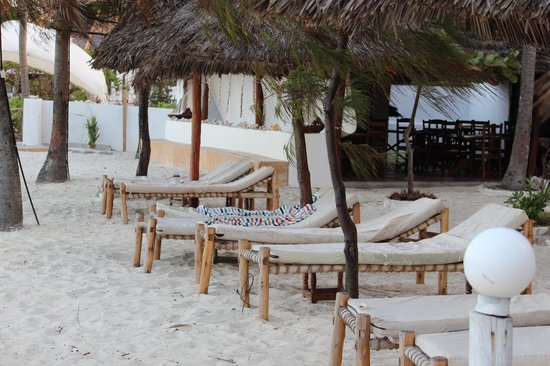 Sea View Lodge Boutique Hotel: Sunchairs at the beachfront