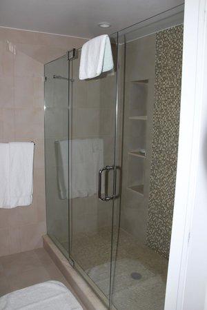 The Lombardy Hotel: Banheiro