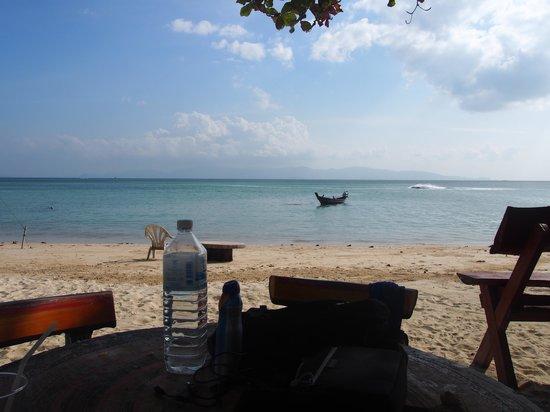 Phangan Villa Beach Bungalow : the beach