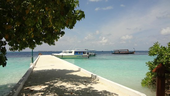 Biyadhoo Island Resort : harbour