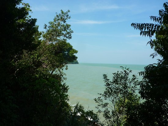 Restaurants in Teluk Bahang