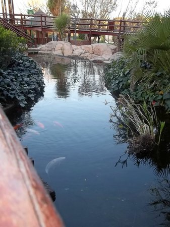 Emerald Resort & Casino: Pond near the mini-golf