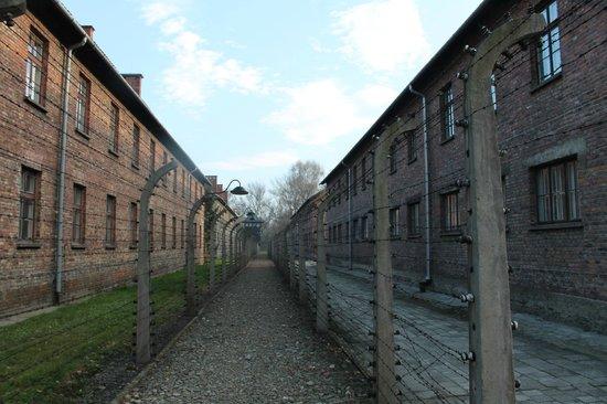 Museo Estatal Auschwitz-Birkenau: Corredor de arame farpado entre os pavilhões do campo de extermínio de Auschwitz, Polônia.