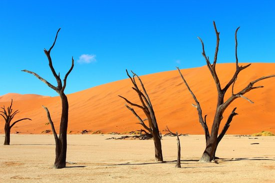 Deadvlei: Дедвлей, Намибия