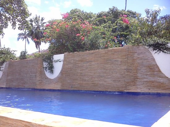 My Blue Hotel: piscina dos fundos