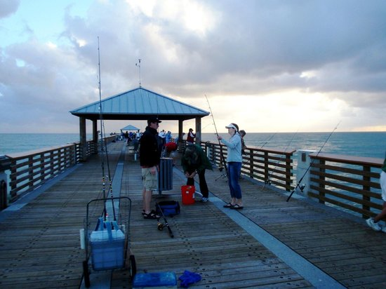 Juno Beach Pier : Typical day on the pier