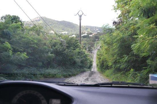 Paradise Peak : road coming down