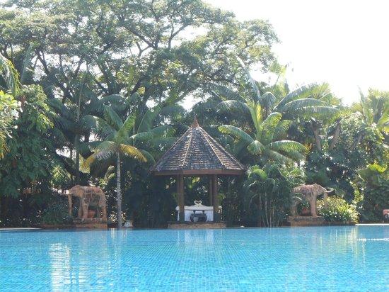 Shangri-La Hotel, Chiang Mai: Piscina Pool