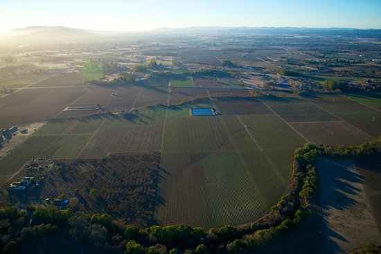 Up & Away Ballooning: The view of the countryside