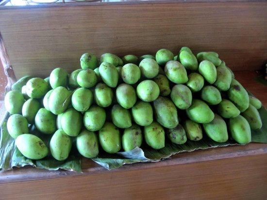 JC Tours: fruit garden