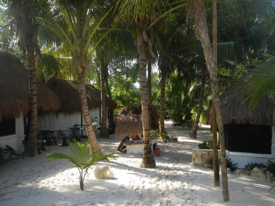 Playa Mambo : The main walkway facing the entrance (beach behind me) with cabanas on each side.