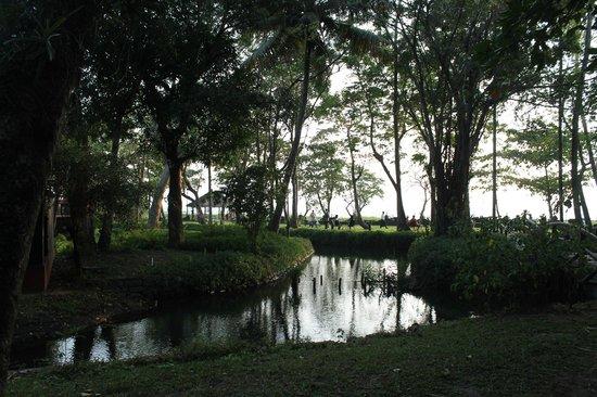 Vivanta by Taj - Kumarakom: To the lakebed