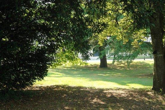 Chateau la Mothe Charente: parc