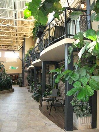 Hotel L'Oiseliere - Montmagny : Les chambres avec terrasse privée, Atrium