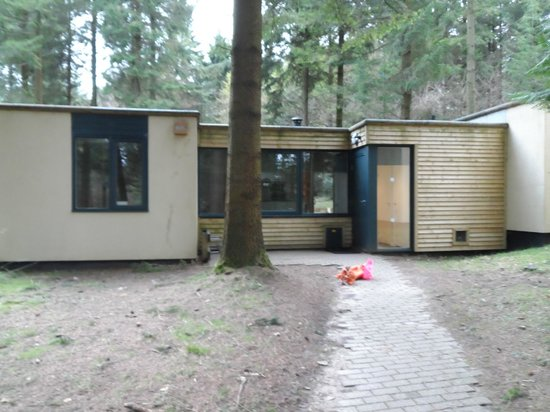 Center Parcs Longleat Forest: Our Woodland Lodge 406