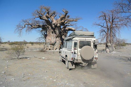 South Africa 4x4: Makgadikgadi pan