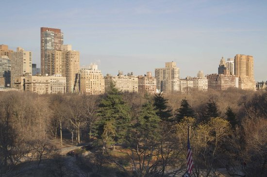 The Ritz-Carlton New York, Central Park: the view from a central park view room