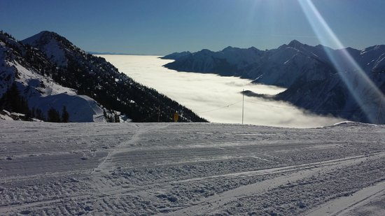 Eagle's Eye Restaurant - Kicking Horse Mountain Resort : That's not the sea .. its the top of the clouds (view from restaurant)