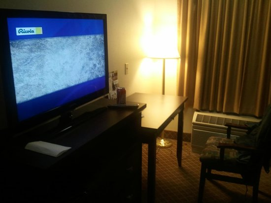 Comfort Inn & Suites Calgary Airport: Entertainment?