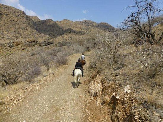 Equitrails Namibia: Picnic ride