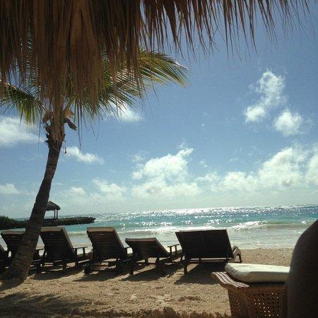 Eden Roc at Cap Cana: Spiaggia