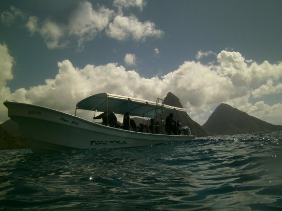 Iyanola Dive Ventures: Dive Boat