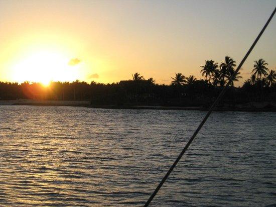 Seahorse Sailing: Last rays of sun