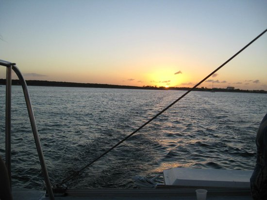 Seahorse Sailing : Ending of sunset