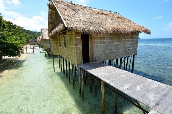 Papua Paradise Eco Resort: Outside view