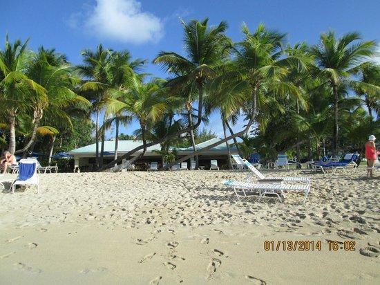 The Buccaneer St Croix: Mermaid Restaurant