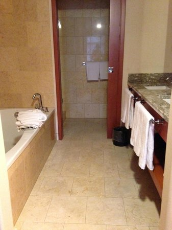 The Paramount Hotel: Bath tub and sinks. Through the doorway is the toilet and stand up shower.