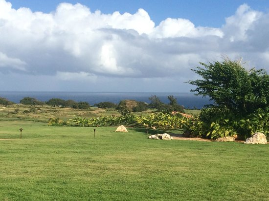 Royal Isabela: View from restaurant