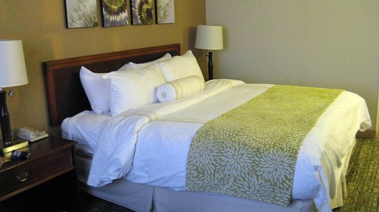 Chicago Marriott Midway: Comfey Bed