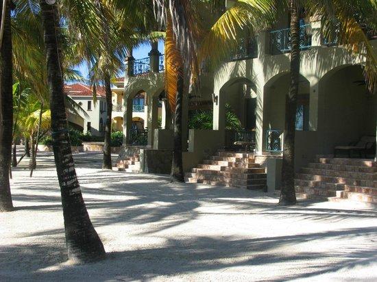 Parrot Tree Plantation : Les immeubles très,très joli