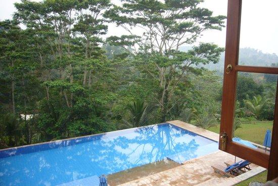 Niyagama House: Der Pool