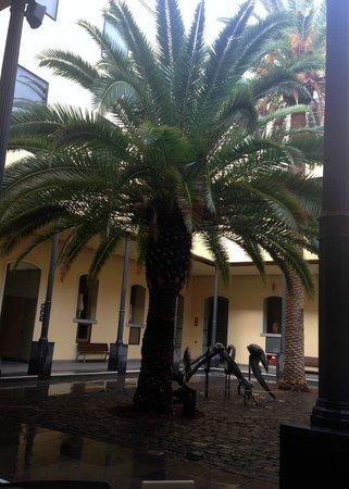 Museo de la Naturaleza y el Hombre : Jardim interior.