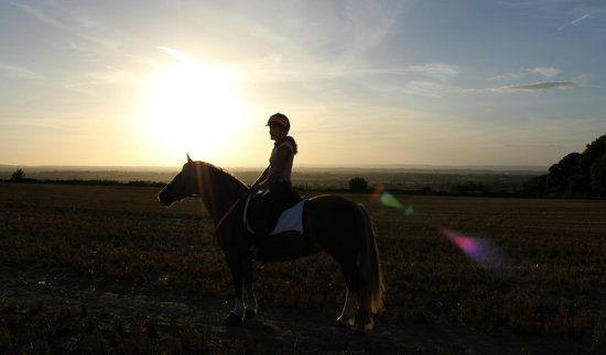 Crosshands Farm: A sunset ride through badminton.
