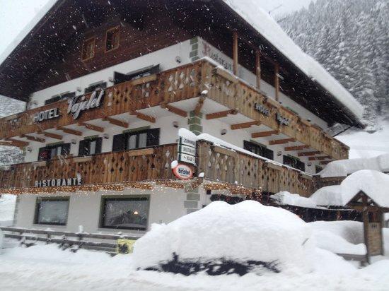 Hotel Vajolet : vista difronte