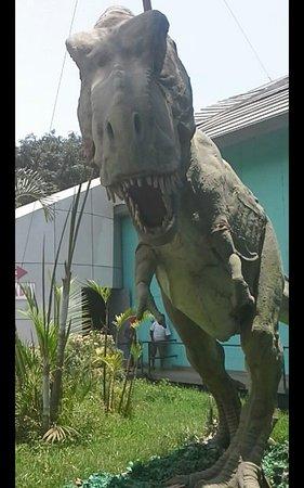 El Viaje A La Era De Los Dinosaurios Espectacular Fotografia De Parque Zoologico Huachipa Lima Tripadvisor Según la subgerencia de control, operaciones y sanciones de ate, el zoológico de huachipa no cumple con las normas de seguridad y de salubridad. tripadvisor