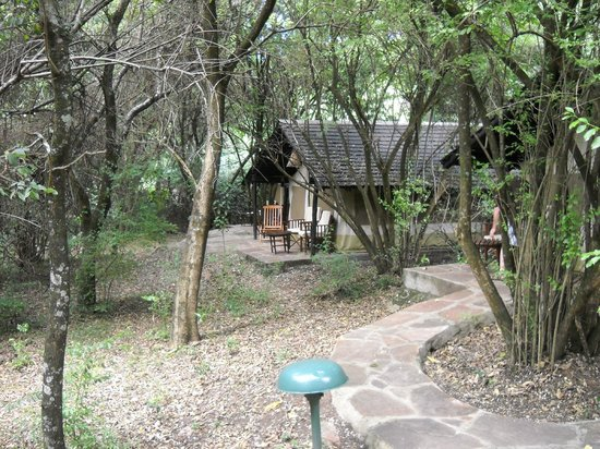 Sarova Mara Game Camp: View from Room