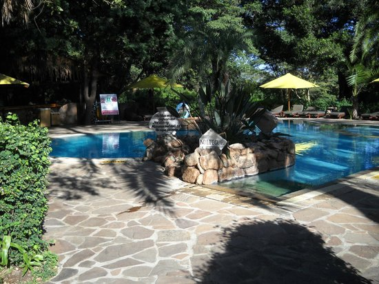 Sarova Mara Game Camp : Pool